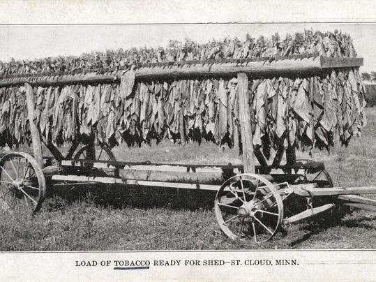 Tobacco on Wagon, St Cloud, ca1917.jpg