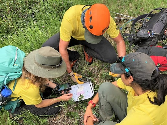 Members of the field team huddle together while searching