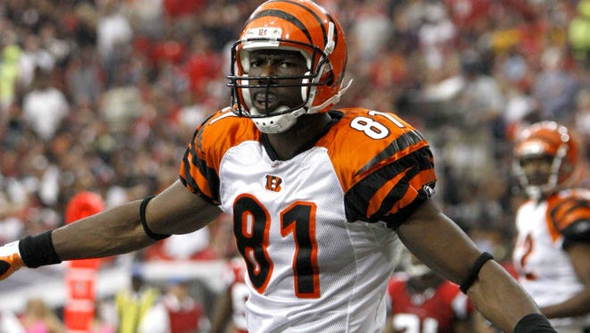 Cincinnati Bengals wide receiver Terrell Owens celebrates after a touchdown catch in October of 2010.
