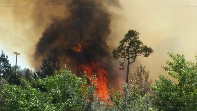 Several brush fires broke out around Brevard County on Tuesday.