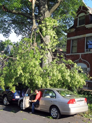 Jacob Roddy decided it was worth the risk to jump into his car and back it out from beneath a dangling tree limb rather than leave it there and hope the branch didn't fall. His car was parked on Senator Place in Clifton. He backed it out without incident.