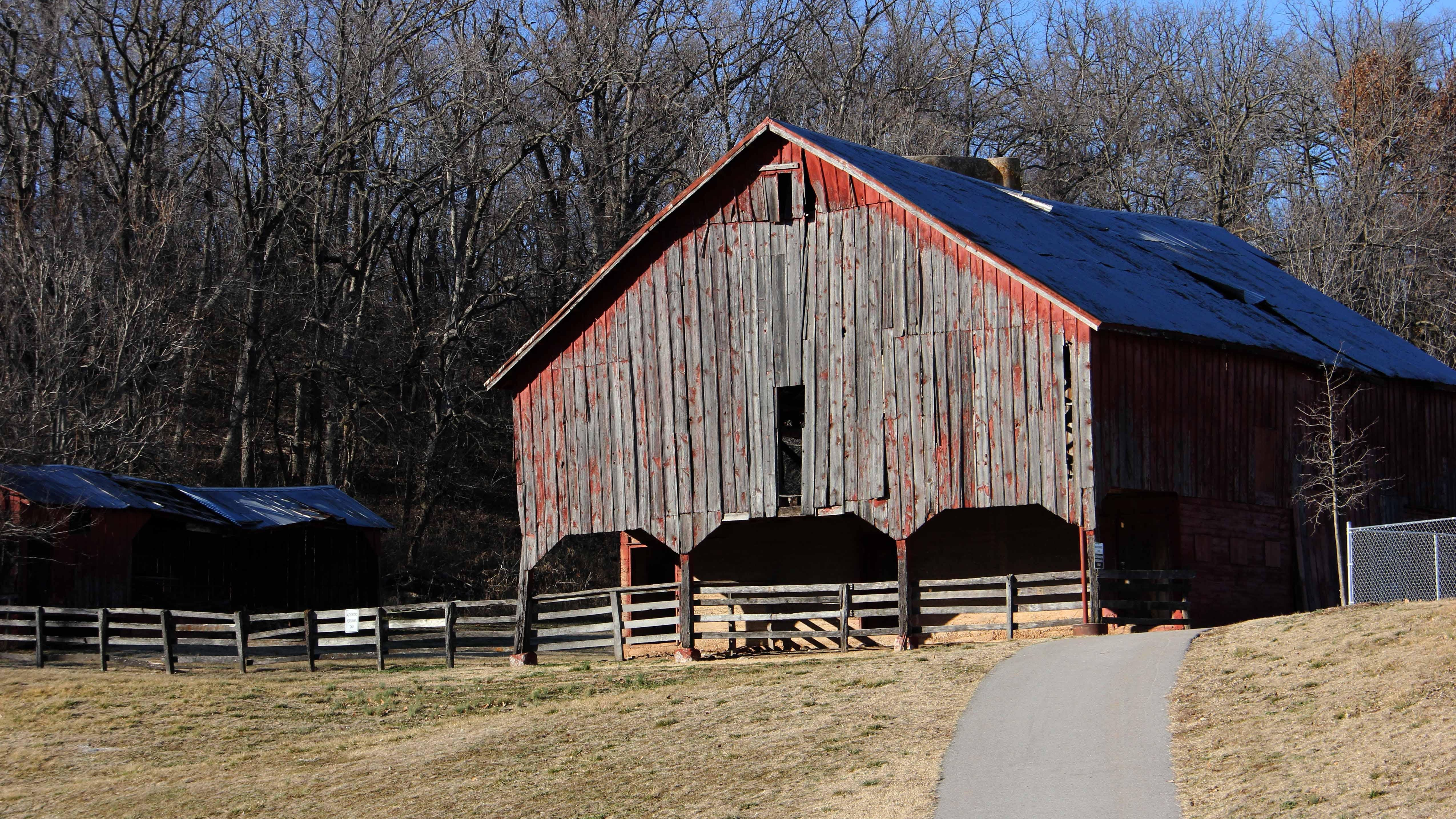 Old Barns Still Prove Useful For Wildlife