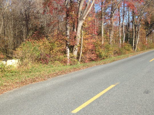 This photo shows a cement ditch-system barricade in the brush on the west side of Backbone Road about a mile south of Sea Tick Road in Eden, Md.. It is where the body of a Baltimore man was found in a ditch with multiple stab wounds on Oct. 29, 2015. Maryland State Police is investigating.