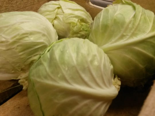 Fiddler's Green sells fresh local cabbages at indoor winter markets.