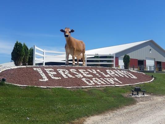 Jerseyland Dairy