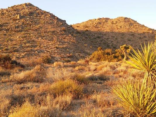 636178704709208550-Mojave.jpg