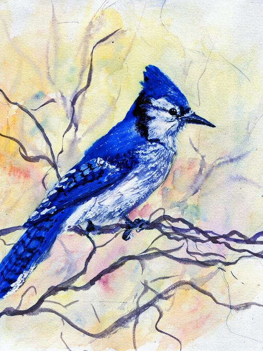 NatureJournal-bluejay.jpg