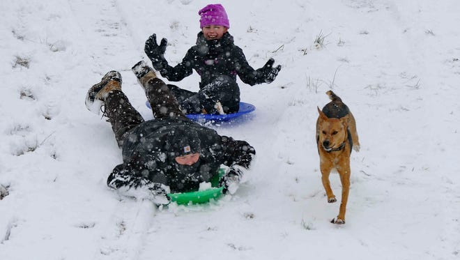 Jason Randall, daughter Hallie and their dog Sandy, enjoy sledding  in southern Greenville Tuesday. Images from the Snow Storm in southern Greenville county Tuesday, Feb. 11, 2014.