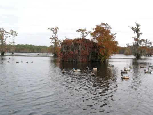 iatt lake louisiana