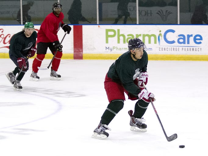About 45 prospective players took part in Sunday's Everblades free agent camp at Germain Arena in Estero.