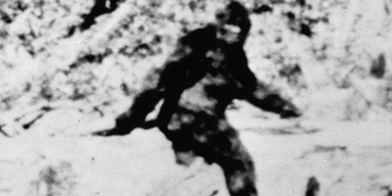фото заны самки снежного человека известность