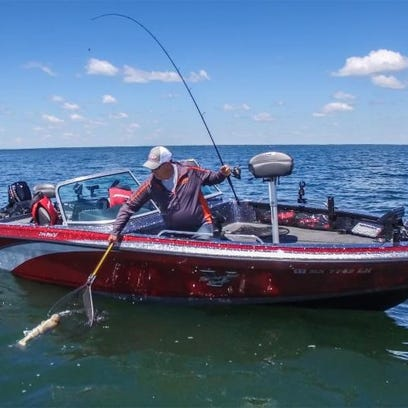 Jigging or slowly dragging a crawler on a live-bait rig is better for fish that stay in one spot.
