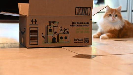 Amazon's new boxes include directions on how to turn them into cat condos.