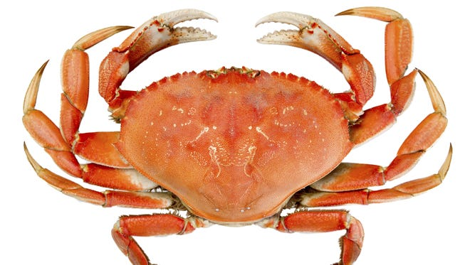 Glassboro is going to be enjoying a lot more crabs.