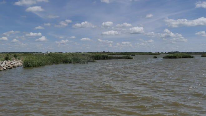 Little Salt Marsh at Quivira National Wildlife Refuge.