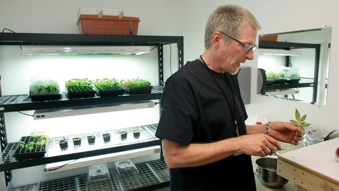 Gregory Stewart at Nine Point Growth Industries in not long after the licensed marijuana grow operation opened in early 2014. Nine Points was shut down earlier this month by the state Liquor and Cannabis Board after it fell behind on its taxes. Stewart said industry turmoil and personal tragedy each contributed to the closure.
