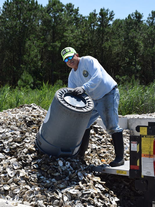 636118712601885767-Dave-Ritondo-deliverning-oyster-shells-to-a-storage-site-for-curing.jpeg
