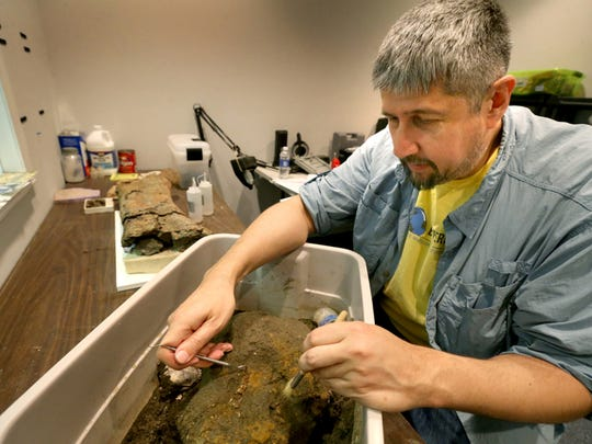 Paleontologist Alan Brown, the Executive Director of Earth Experience, The Middle Tennessee Museum of Natural History in Murfreesboro, works to uncover fossilized shells in a dirt sample from West Tennessee, on Friday April 17, 2015, in the Paleo Lab.
