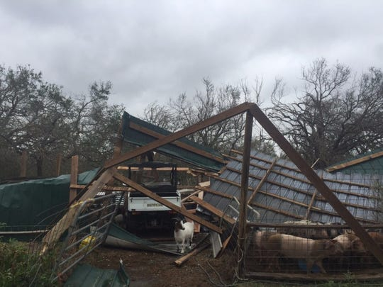 A barn at the Four String Farm was destroyed after Hurricane Harvey made landfall in Rockport Friday.  The barn house 200 animals and all but a chicken survived.