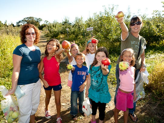Apple Holler of Sturtevant features pick-your-own or pre-picked apples, peaches, and pears with over 30,000 trees, and home of Grandma's pumpkin patch.