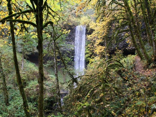 The 100-foot Shellburg Falls in the distance, located north of Mehama off Fernridge Road east of Salem off Highway 22.