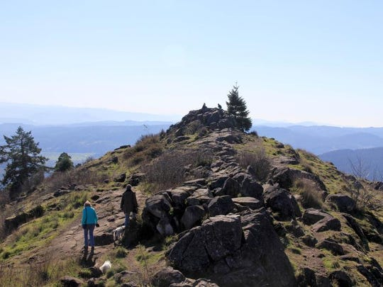 Spencer Butte Park lets hikers climb through dense forest to views that look across Eugene and Springfield.