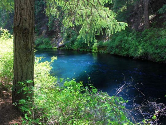 The colors of the Metolius River are striking and can be best viewed along the Metolius River Trail.