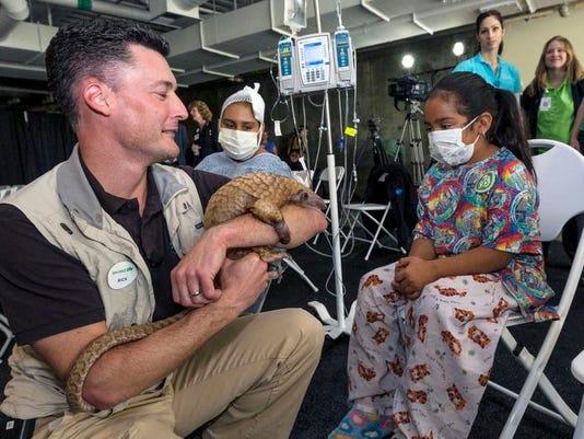 zzzzbc-us--pets-hospitalanimals-ref.jpg