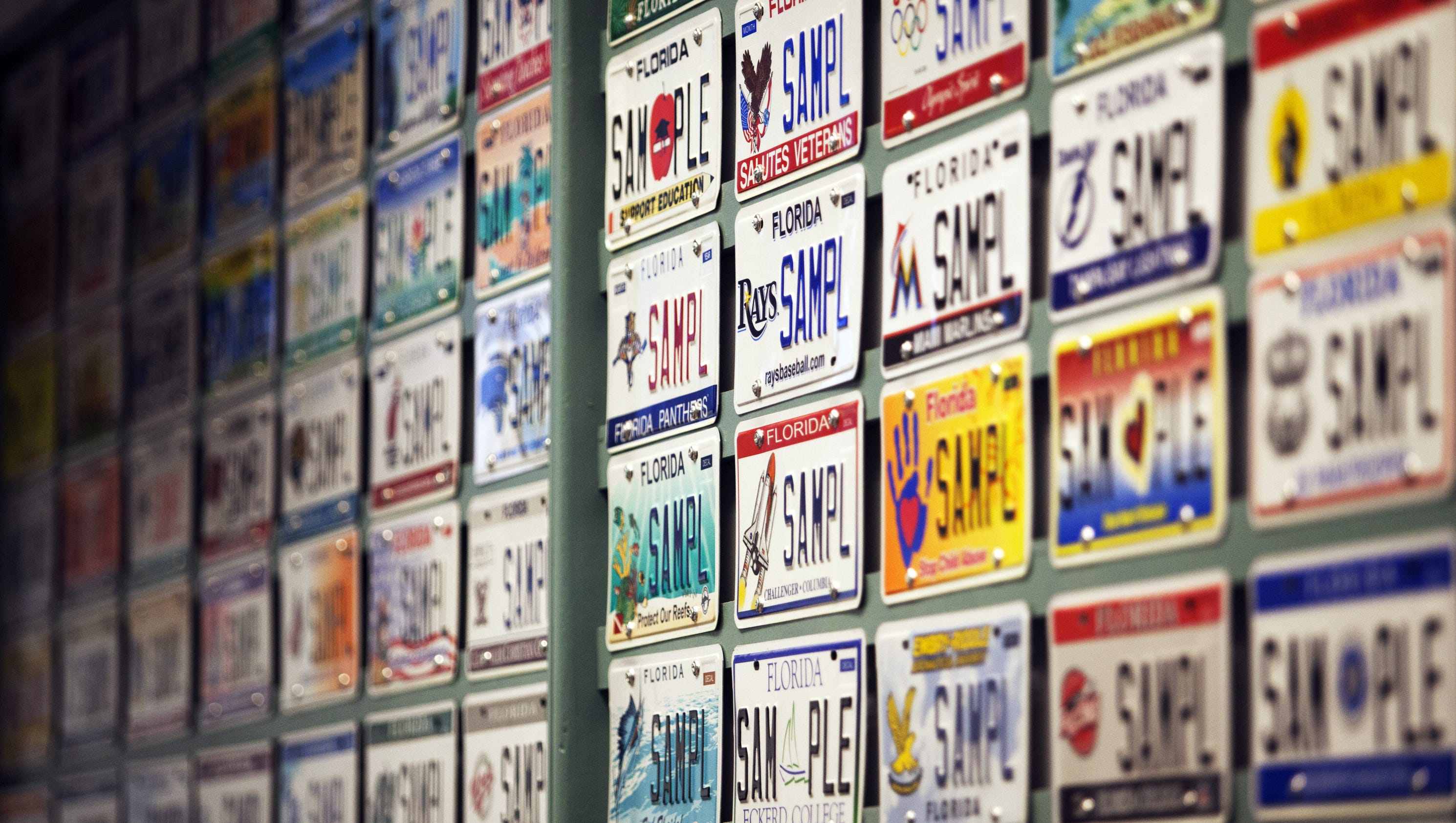 The 10 Most Popular Specialty License Plates In Swfl