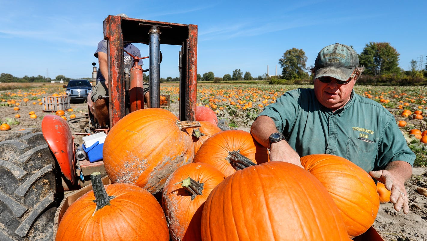 Riley: How many pumpkins do you have to carve to set a world record? Ask Marine City
