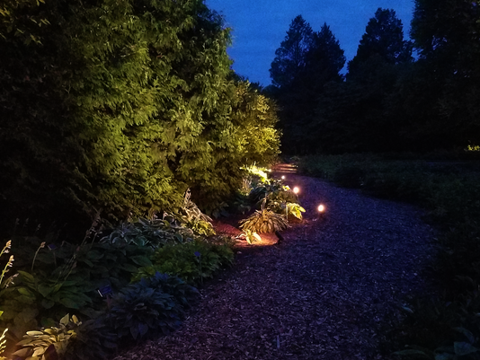 Get-Out Guide: Walk through a garden at night and see local artists