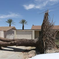 Crews continue cleaning up at California Villas apartments on Elkhorn Trail in Palm Desert Monday morning. The city-owned apartment complex, within the Palm Desert Country Club, was hit hard by Thursday's storm with trees crashing down on apartments.