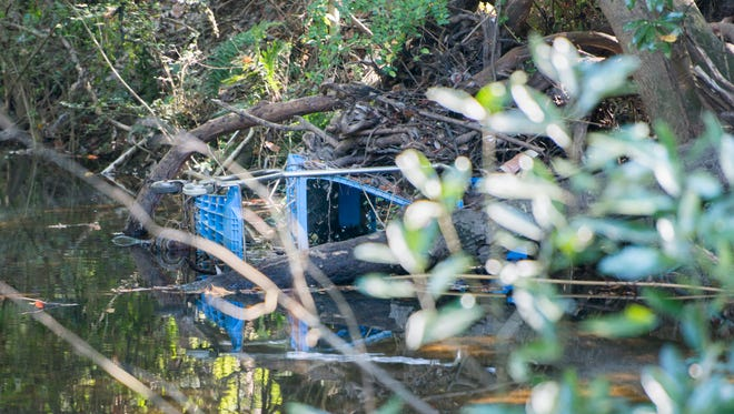 Trash, including this shopping cart, pollute Carpenter's Creek in Pensacola on Oct. 31, 2016.