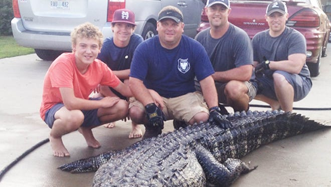 Hunters will get a second chance at forfeited alligator permits.