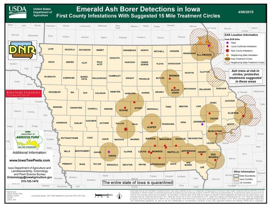 The emerald ash borer has now been identified in 21 Iowa counties.