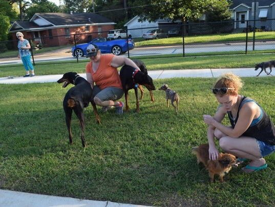 Hevan Richards (front, right) pets Sadie who belongs to Linda Verzwyvelt (back, far left) while at the new dog park located on Gilbert Street in Alexandria. Shana Stephens (center) pets her doberman pinchers Jackson and Khaleesi. Richards brought her four mini doberman pinchers Phineas, Stacy, Isabella and Doof.