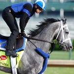 Kentucky Derby 2016 contenders at a glance