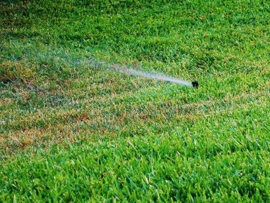 636310479736344637-Irrigation-June-4--yard-doc.JPG