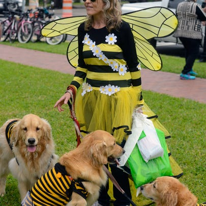 Jill Nelson and her dogs check out the competition