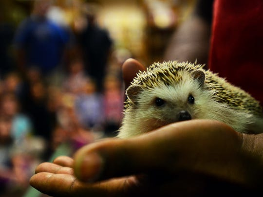 Marysville Public Library hosted an exotic animals