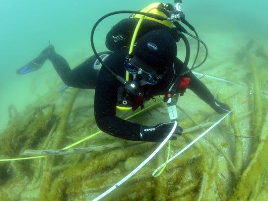 Students from East Carolina University survey the Lake