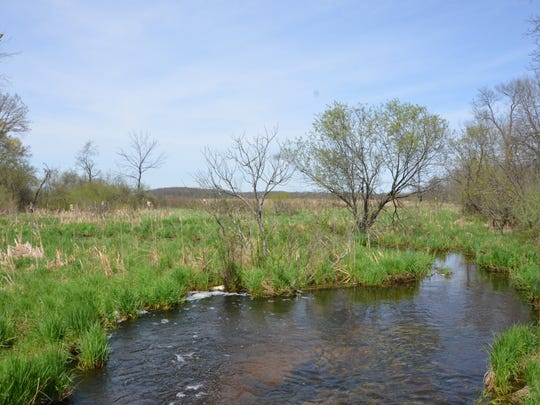 A view of a stream on Big Marsh Farm in Convis Township and, just beyond, the Bernard W. Baker Sanctuary.
