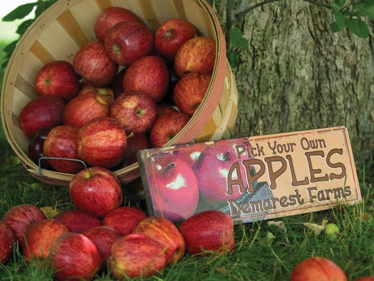 Apple products from Demarest Farms in Hillsdale.