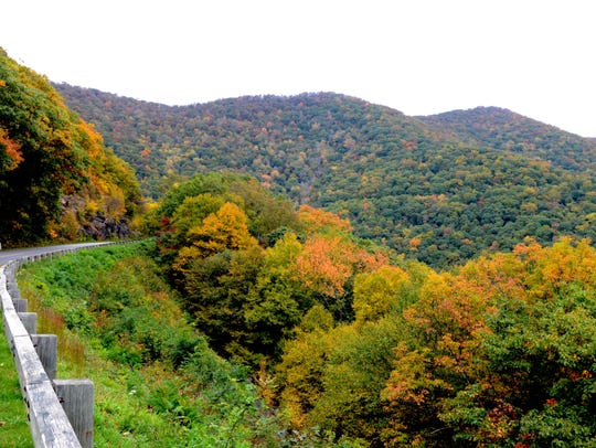 Leaves start to change on the Blue Ridge Parkway on
