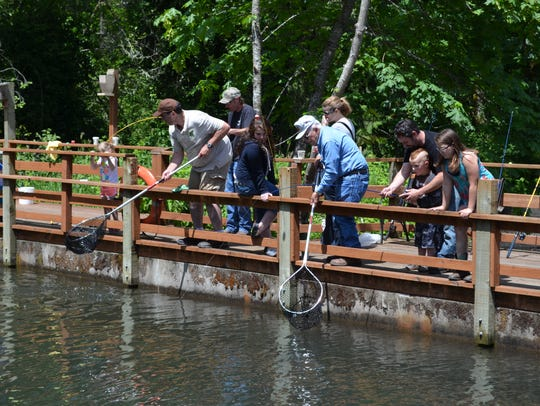 Traditional Free Fishing Weekend is June 2 and 3 in