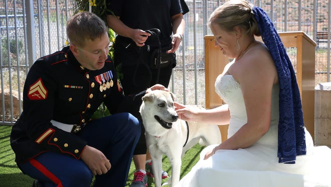 Carolyn Kirk and Cameron Grischott meet a rescue dog after getting married at the Nevada Society for the Prevention of Cruelty to Animals, or SPCA, building in Reno on May 24, 2018.