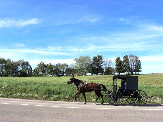Amish Cook Amish Families Adopt Children