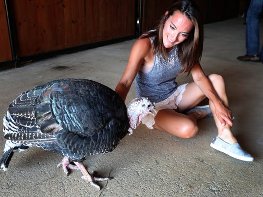 Donna Sabeno loves on one of the turkeys at the new Christiana location of The Gentle Barn a home, on Sunday, Aug. 12, 2018.