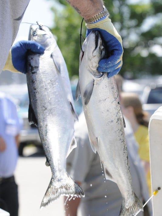 070508 Fishy007