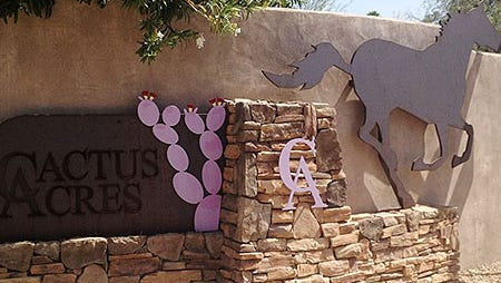 Cactus Acres